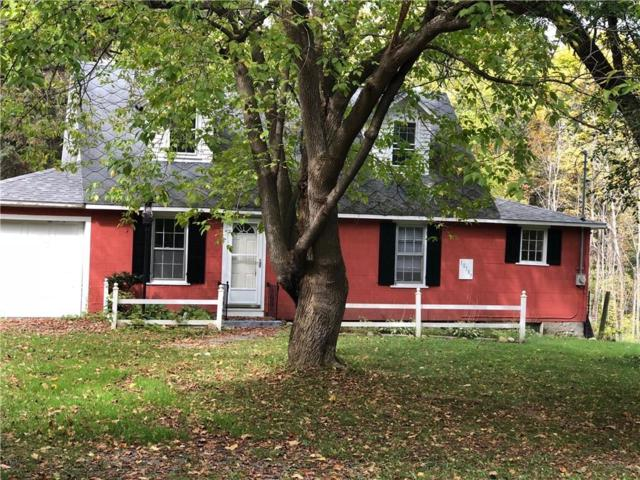10187 State Route 230, Wayne, NY 14840 (MLS #R1154151) :: The Rich McCarron Team