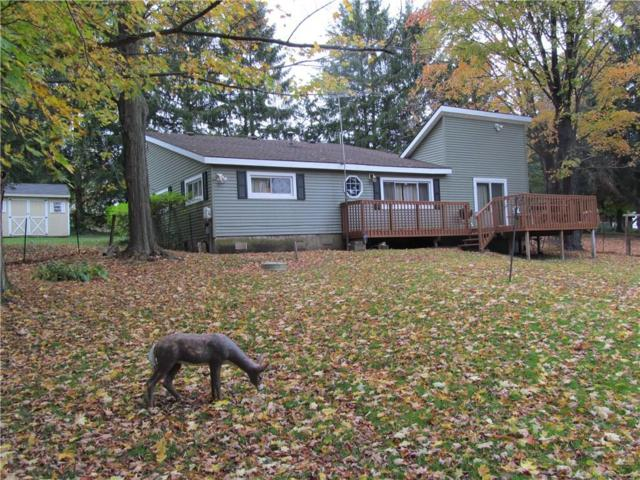 13999 King Road Road, Wolcott, NY 14590 (MLS #R1154644) :: MyTown Realty