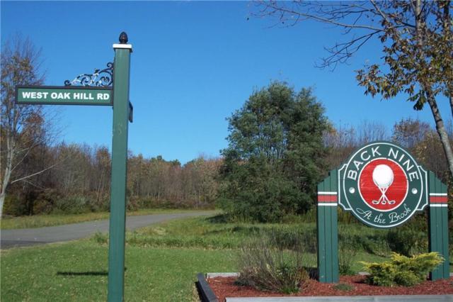 0 Topo Lane Lot #1, Ellicott, NY 14701 (MLS #R1155106) :: BridgeView Real Estate Services