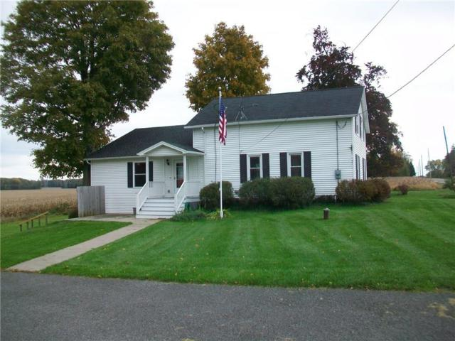 3592 Route 414, Rose, NY 14516 (MLS #R1156095) :: The Chip Hodgkins Team