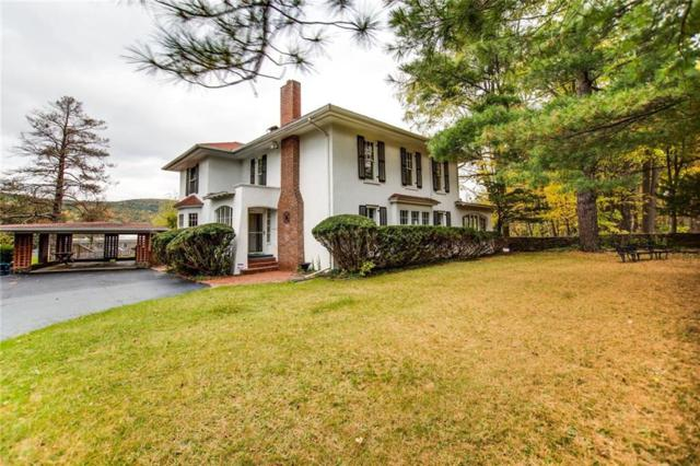 8501 State Route 54, Urbana, NY 14840 (MLS #R1157071) :: The Chip Hodgkins Team