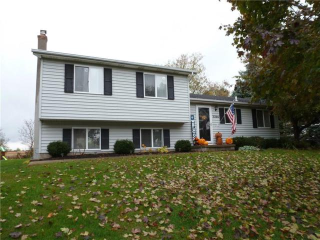 3266 Bronson Hill Road, Livonia, NY 14487 (MLS #R1157400) :: The Rich McCarron Team