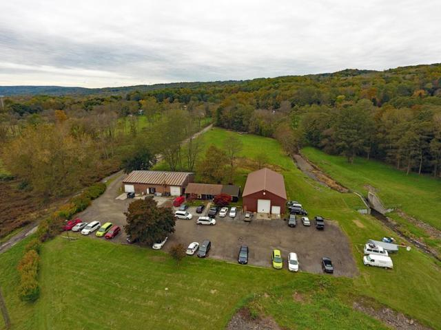 615 Five Mile Drive, Ithaca-City, NY 14850 (MLS #R1157760) :: 716 Realty Group