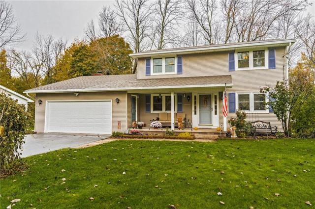 181 Hollybrook Road, Sweden, NY 14420 (MLS #R1158335) :: BridgeView Real Estate Services