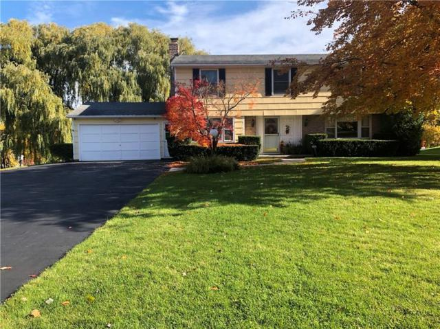 46 Northfield Gate, Pittsford, NY 14534 (MLS #R1158460) :: Updegraff Group