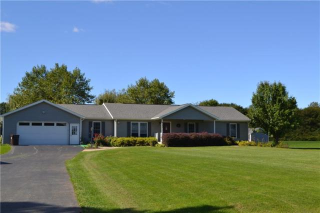 4446 Federal Road, Livonia, NY 14487 (MLS #R1159148) :: The Rich McCarron Team