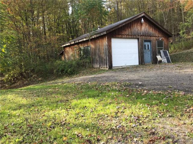9730 Brownell Road, French Creek, NY 14724 (MLS #R1159833) :: The Rich McCarron Team
