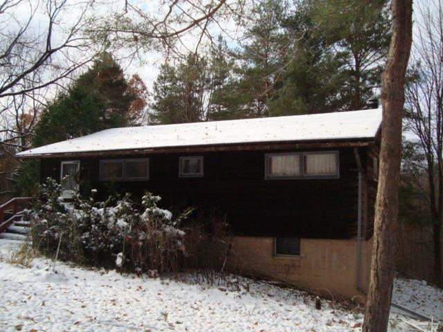 6508 State Route 15A, Canadice, NY 14560 (MLS #R1160022) :: The Rich McCarron Team