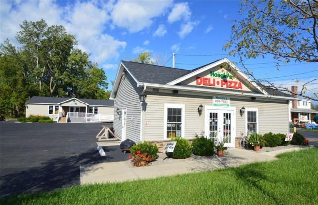 1615 Scottsville Road, Chili, NY 14623 (MLS #R1160138) :: BridgeView Real Estate Services