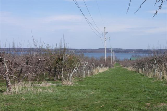 00 State Route 14, Geneva-Town, NY 14456 (MLS #R1160630) :: Updegraff Group