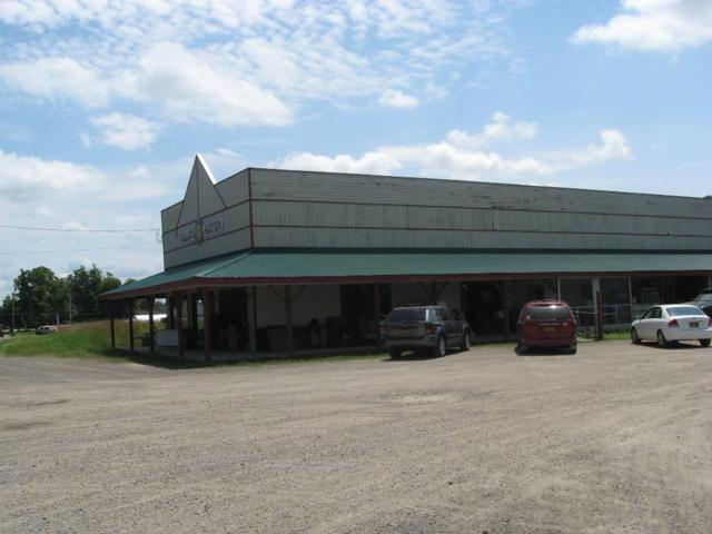 6729 - 6747 State Route 415 S, Bath, NY 14810 (MLS #R1161070) :: Robert PiazzaPalotto Sold Team