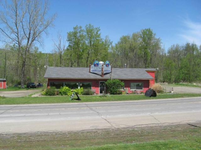 8465 State Route 54, Urbana, NY 14840 (MLS #R1164249) :: BridgeView Real Estate Services