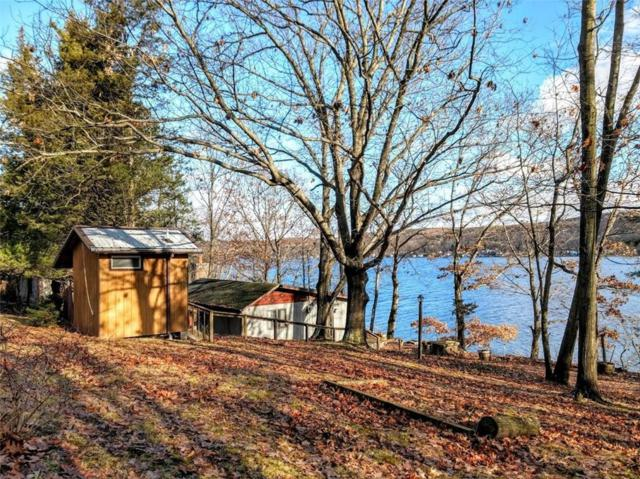 6277 E Bluff Drive, Jerusalem, NY 14527 (MLS #R1165569) :: The Rich McCarron Team