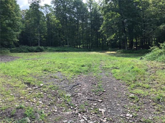 0 State Route 417 W, Bolivar, NY 14715 (MLS #R1166025) :: 716 Realty Group
