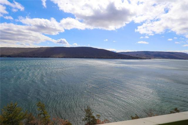 165 Cliffside Drive, South Bristol, NY 14424 (MLS #R1166608) :: The Rich McCarron Team