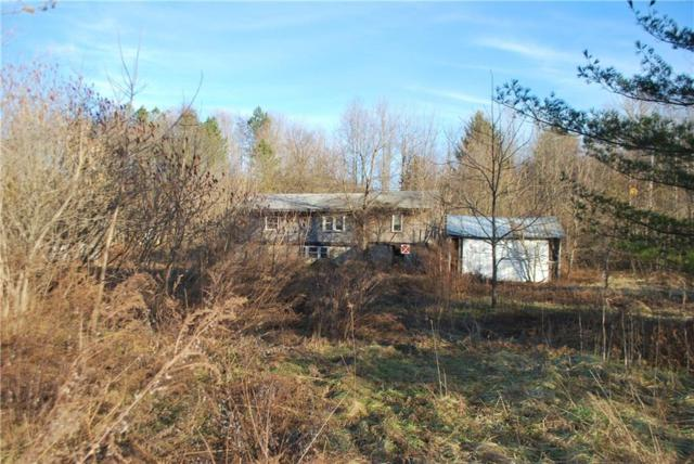 3518 Slyburg Road 13146, Butler, NY 14590 (MLS #R1167147) :: The Glenn Advantage Team at Howard Hanna Real Estate Services
