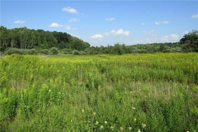 0 Bayview Rd Road E, Ellery, NY 14712 (MLS #R1167655) :: BridgeView Real Estate Services