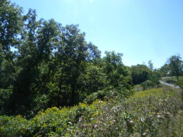 Lot # 6 Rabbit Run, East Bloomfield, NY 14469 (MLS #R1168958) :: MyTown Realty
