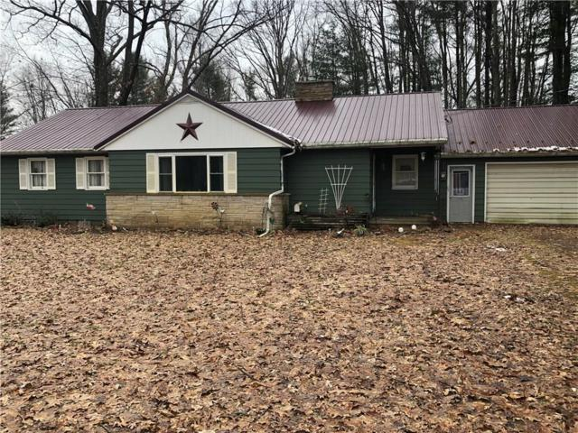 1222 Burnt Hill Road, Portville, NY 14760 (MLS #R1169066) :: BridgeView Real Estate Services