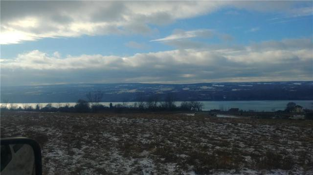 0000 State Route 414, Hector, NY 14818 (MLS #R1170207) :: MyTown Realty