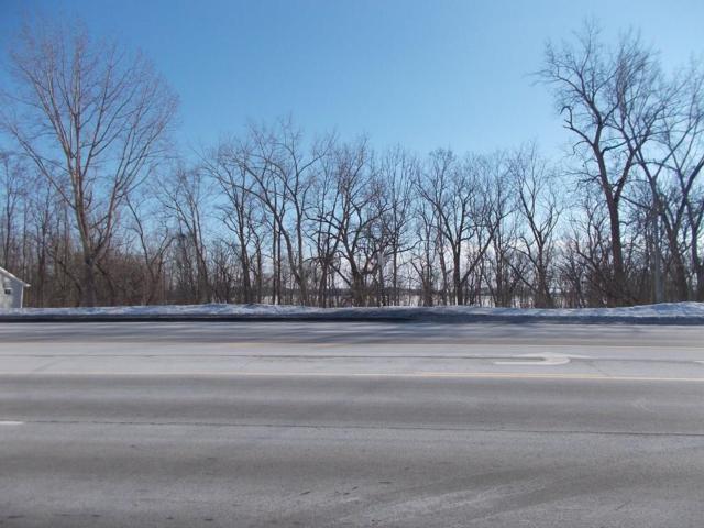 00 Route 5 &20 Road, Seneca Falls, NY 13148 (MLS #R1171314) :: The Rich McCarron Team