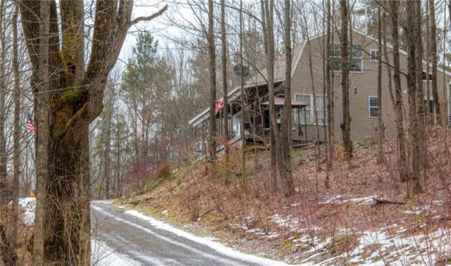 9003 Akins Road, Cohocton, NY 14826 (MLS #R1171671) :: BridgeView Real Estate Services