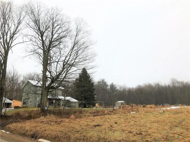 4500 Harris Hill Road, Gerry, NY 14733 (MLS #R1171774) :: 716 Realty Group