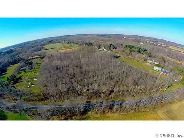 1143 W Bloomfield Road, Mendon, NY 14472 (MLS #R1171992) :: The CJ Lore Team | RE/MAX Hometown Choice