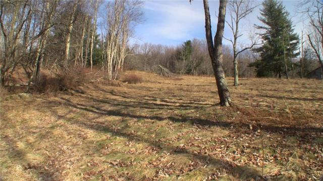 East Glenwild Road East Glenwild Road, Thompson, NY 12775 (MLS #R1172496) :: MyTown Realty