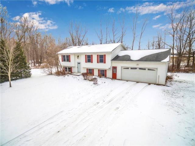 139 Brower Road, Ogden, NY 14559 (MLS #R1172624) :: Robert PiazzaPalotto Sold Team