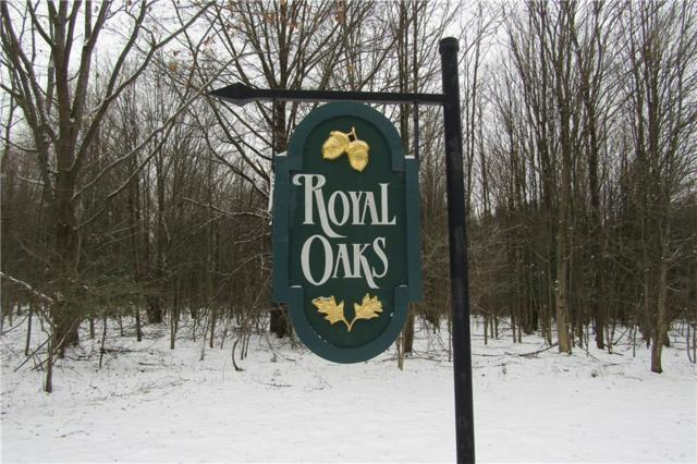 Lot 3 Howard Avenue, Ellicott, NY 14701 (MLS #R1172659) :: The Rich McCarron Team