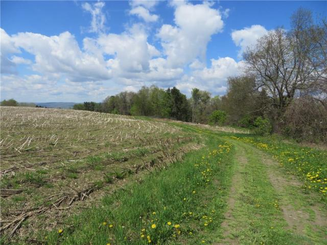 0 State Route 63 S, Wayland, NY 14437 (MLS #R1172875) :: Updegraff Group