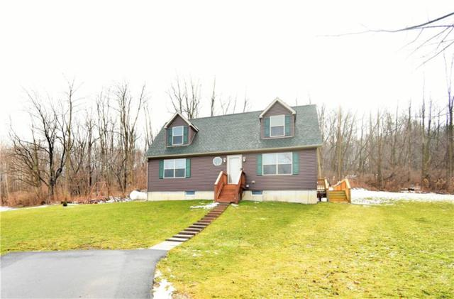 6792 Mount Baldy Road, Westfield, NY 14787 (MLS #R1173448) :: Updegraff Group