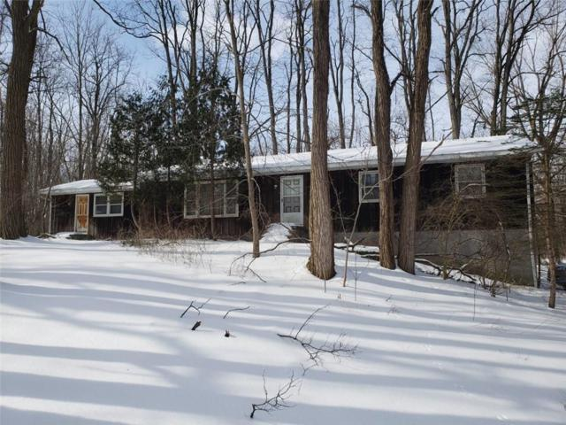 2562 Townline Road, Phelps, NY 14456 (MLS #R1174415) :: Updegraff Group