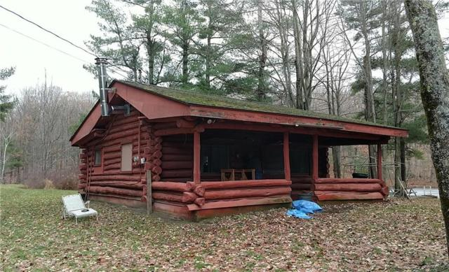 6666 Fisher Tract Drive, Bristol, NY 14424 (MLS #R1174536) :: Robert PiazzaPalotto Sold Team