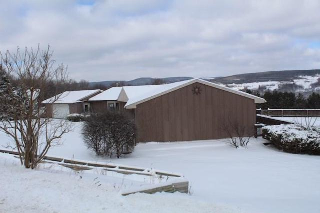 8595 County Route 87, Urbana, NY 14840 (MLS #R1175778) :: Updegraff Group