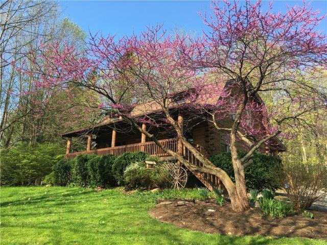 4758 Deuel Road, Canandaigua-Town, NY 14424 (MLS #R1176014) :: Updegraff Group