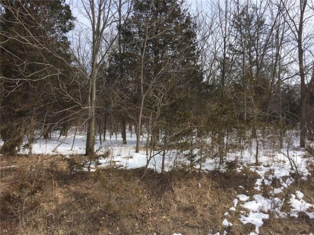 5737 Waterview  (Lot 63) Way, Romulus, NY 14521 (MLS #R1176294) :: Robert PiazzaPalotto Sold Team