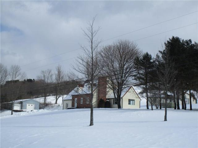 4289 Niles Hill Road, Wellsville, NY 14895 (MLS #R1177578) :: BridgeView Real Estate Services