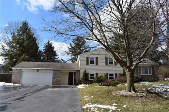 43 Woody Lane, Penfield, NY 14625 (MLS #R1178051) :: The Rich McCarron Team