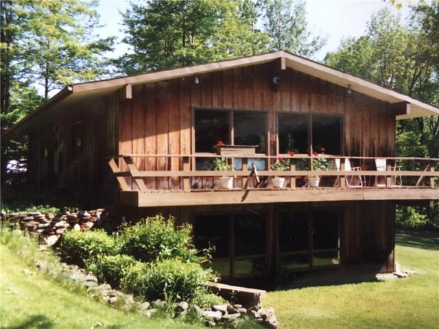 6187 Mchenry Valley Road, Alfred, NY 14803 (MLS #R1179274) :: Updegraff Group
