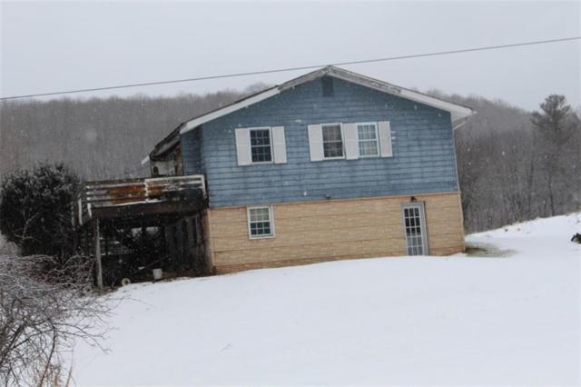 6303 Palmiter Road, Alfred, NY 14803 (MLS #R1180026) :: Robert PiazzaPalotto Sold Team
