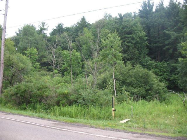 0 State Route 53 S, Prattsburgh, NY 14873 (MLS #R1180235) :: Robert PiazzaPalotto Sold Team
