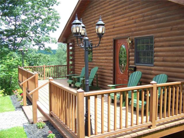 7415 County Road 49, Caneadea, NY 14717 (MLS #R1180734) :: Updegraff Group