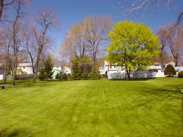 108 Dorothy Avenue, Rochester, NY 14614 (MLS #R1181163) :: Updegraff Group