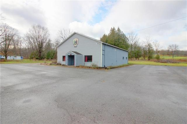 5286 State Route 14, Geneva-Town, NY 14456 (MLS #R1181907) :: Robert PiazzaPalotto Sold Team