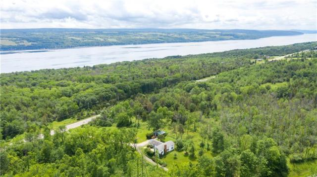 4480 Nys Route 14, Starkey, NY 14837 (MLS #R1182003) :: Updegraff Group