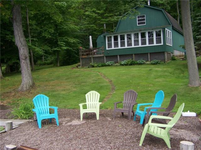 7078 Sunrise Drive, Huron, NY 14555 (MLS #R1182058) :: Robert PiazzaPalotto Sold Team
