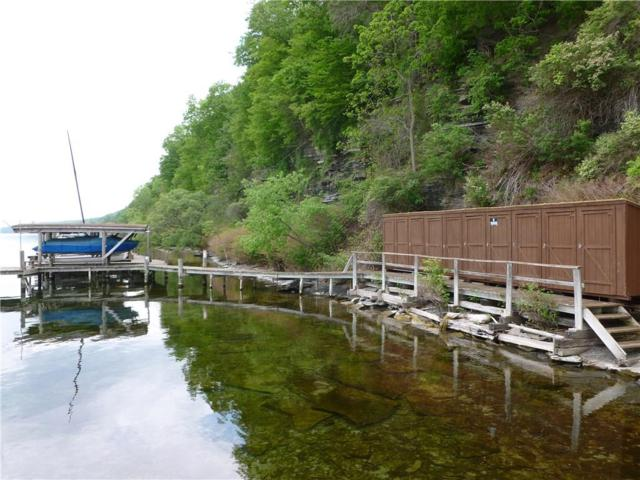 5334 Black Walnut Road, Starkey, NY 14837 (MLS #R1182239) :: Robert PiazzaPalotto Sold Team