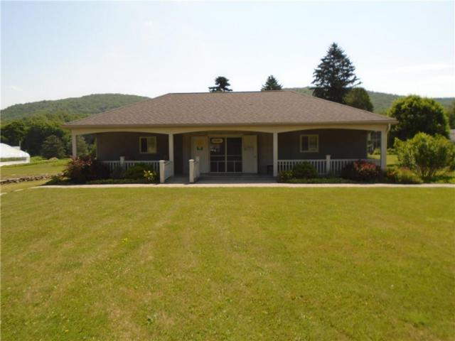 7142 State Route 21, Almond, NY 14804 (MLS #R1182351) :: Updegraff Group